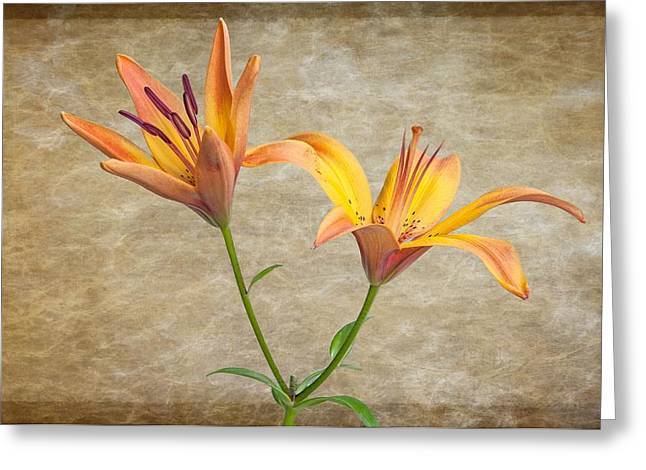 Two Lilies Greeting Card by Randy Walton
