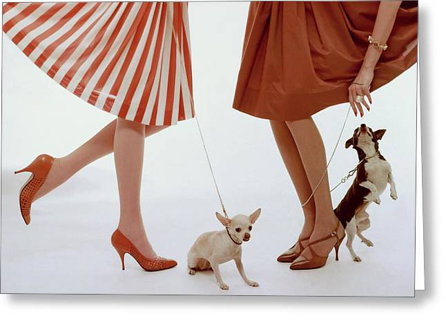Two Models With Dogs Greeting Card by William Bell