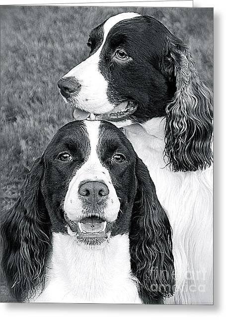 Greeting Card featuring the photograph Two Of A Kind by Barbara Dudley