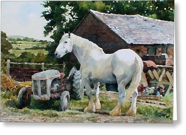 Two Old Grays Greeting Card by Anthony Forster