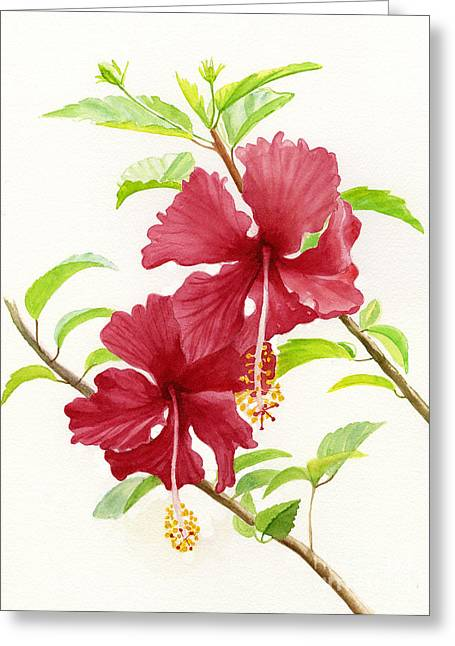 Two Red Hibiscus Flowers Greeting Card by Sharon Freeman