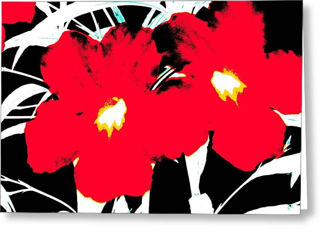 Two Red Jack Flowers Greeting Card