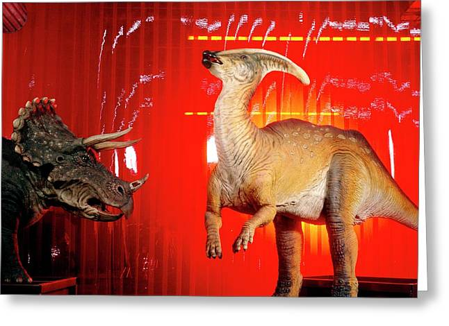 Two Robotic Dinosaurs Greeting Card by Peter Menzel, Dinamation/science Photo Library