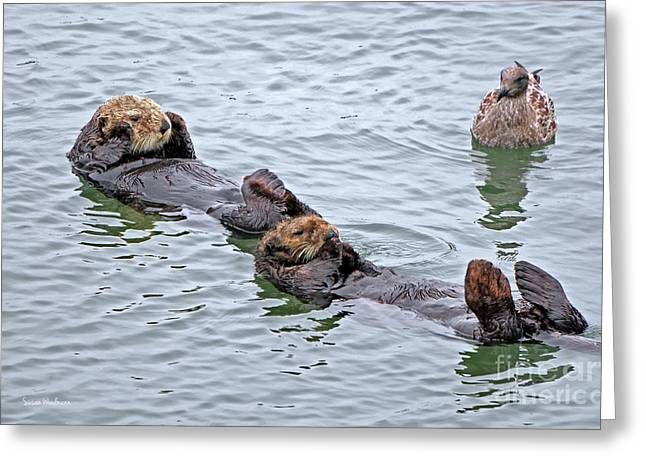 Two Sea Otters And A Gull Greeting Card