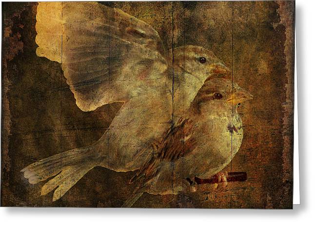Two Sparrows Greeting Card