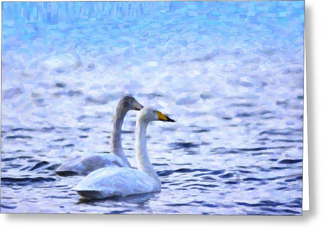 Two Swans Swimming Greeting Card by Tommytechno Sweden