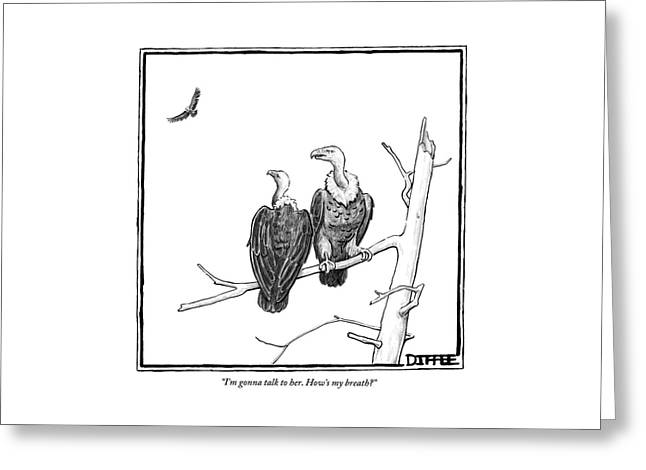 Two Vultures Chat As They Look At A Female Greeting Card