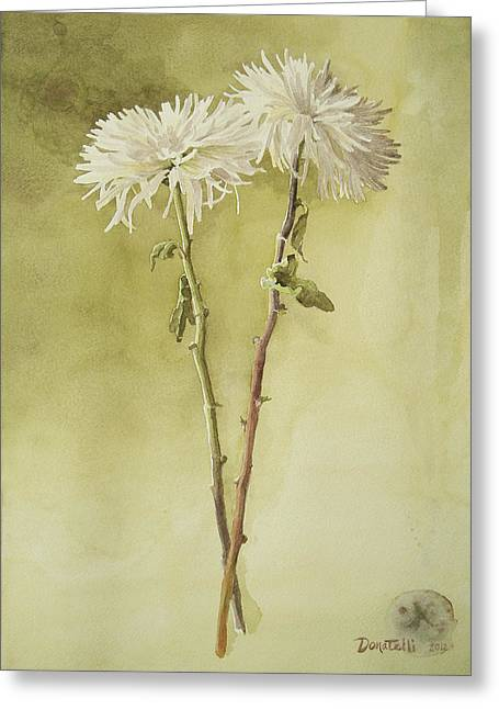 Two White Mums Greeting Card by Kathryn Donatelli