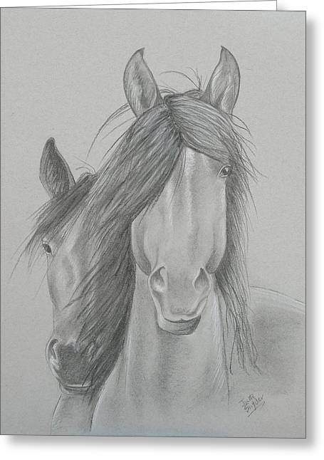 Two Wild Horses Greeting Card