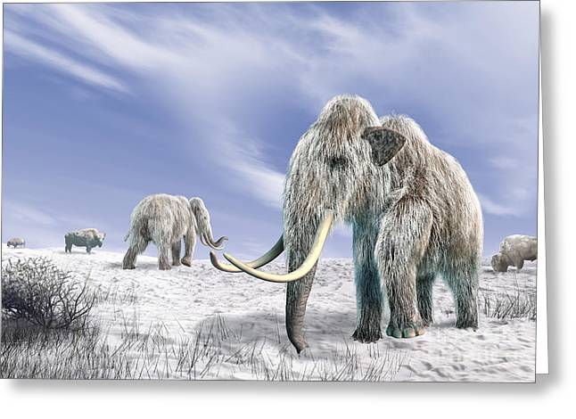 Two Woolly Mammoths In A Snow Covered Greeting Card by Leonello Calvetti