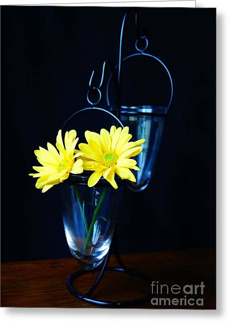 Two Yellow Daisies Greeting Card