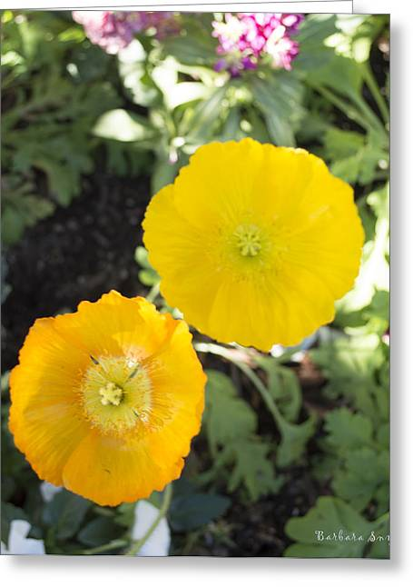 Two Yellow Flowers Greeting Card