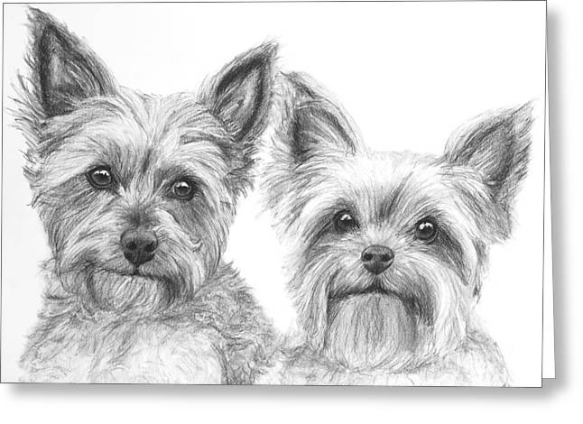 Two Yorkshire Terriers In Charcoal Greeting Card