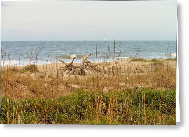 Tybee Island Beach Greeting Card by Kay Gilley