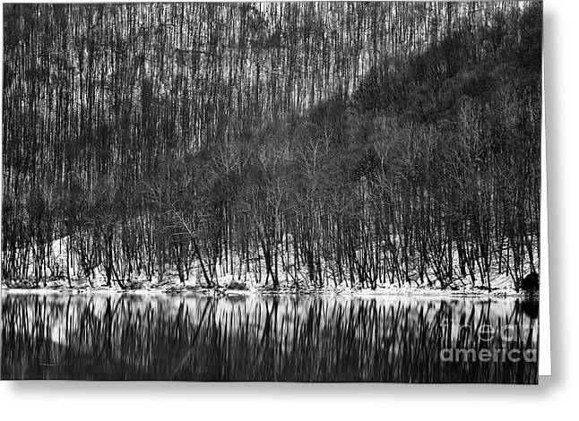 Tygart Valley River D30009161bw Greeting Card
