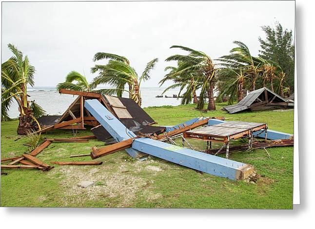 Typhoon Dolphin Aftermath Greeting Card by Jim Edds