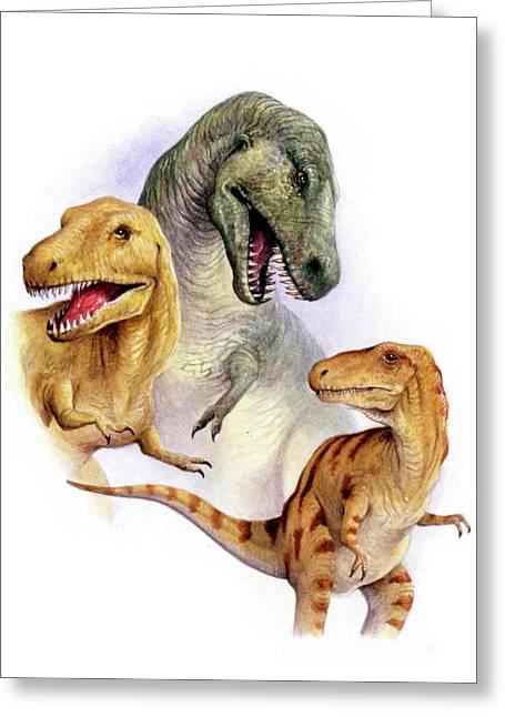 Tyrannosaurs Greeting Card by Deagostini/uig