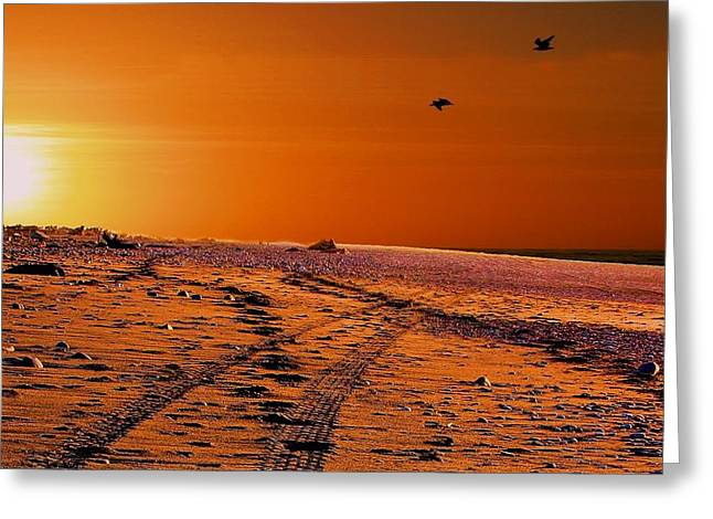 Tyre Tracks At Sunset Greeting Card