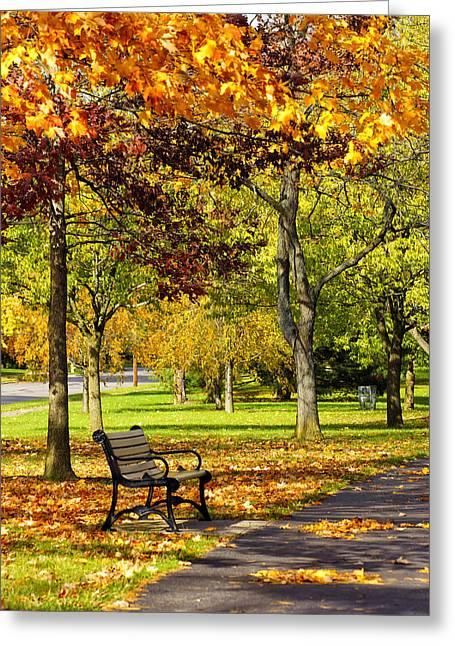 Ua In The Fall 2013 Greeting Card