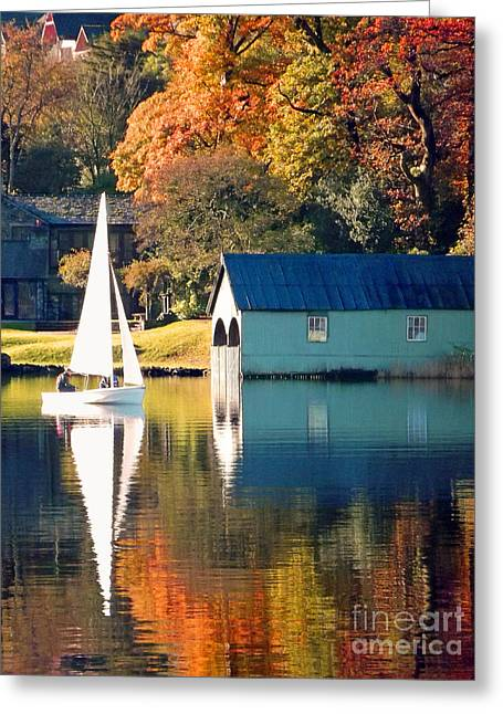 Greeting Card featuring the photograph Ullswater by Linsey Williams