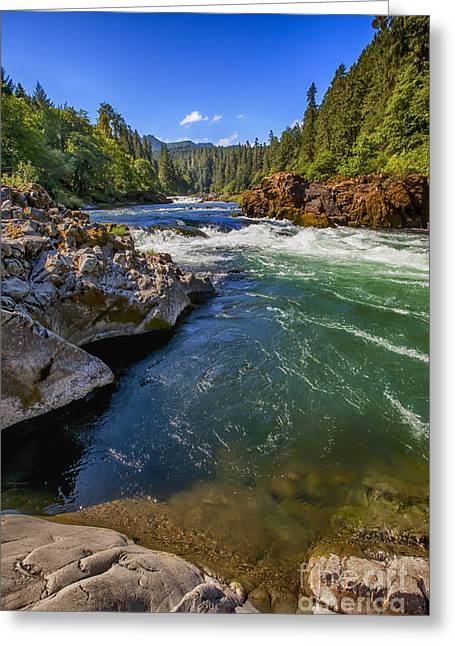 Greeting Card featuring the photograph Umpqua River by David Millenheft