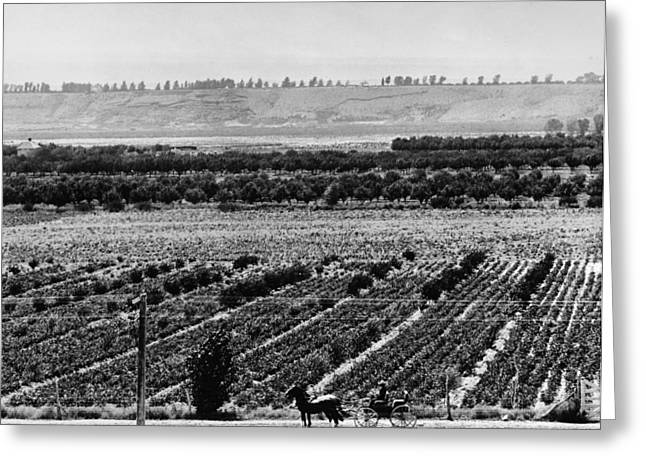 Uncompahgre Valley Farm Greeting Card by Granger