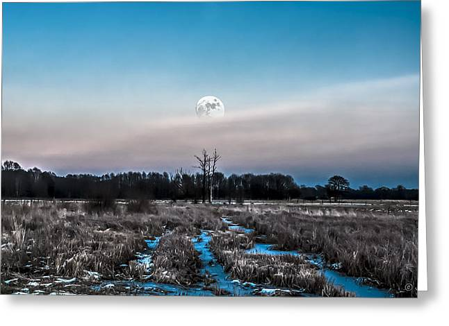 Under Cold Moonlight In Blue Greeting Card
