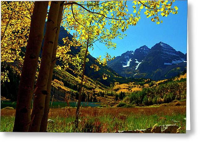 Under Golden Trees Greeting Card