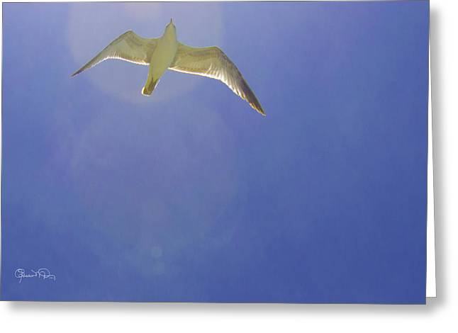 Under His Wings II Greeting Card