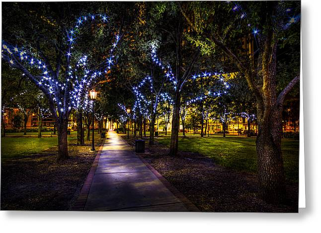Under The Lights Greeting Card by Marvin Spates