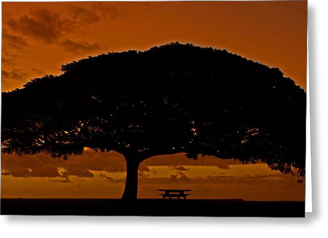 Under The Monkeypod Tree Greeting Card