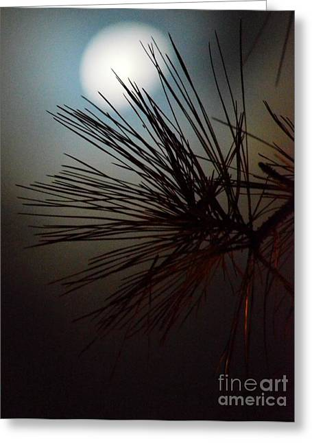 Under The Moon II Greeting Card by Maria Urso