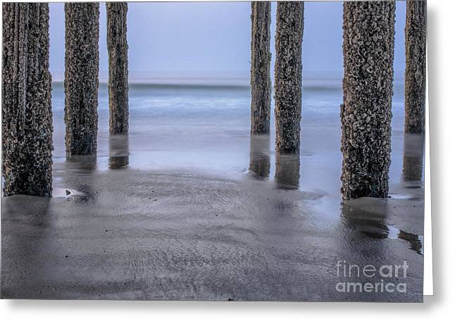 Under The Pier Greeting Card by Scott Thorp