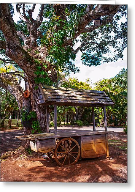 Under The Shadow Of The Tree. Eureka. Mauritius Greeting Card by Jenny Rainbow