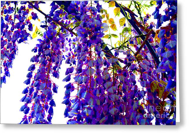 Under The Wisteria Greeting Card by Alys Caviness-Gober