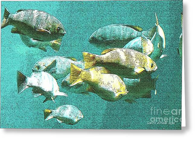 Underwater Fish Swimming By Greeting Card by Artist and Photographer Laura Wrede
