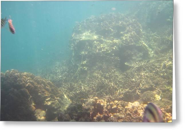Underwater - Long Boat Tour - Phi Phi Island - 011381 Greeting Card