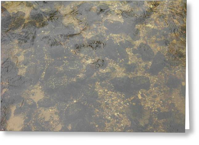 Underwater River Rock Greeting Card by Erica  Darknell