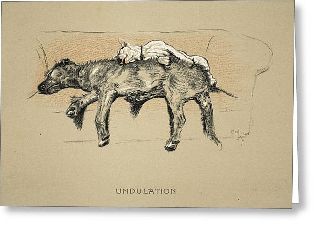Undulation, 1930, 1st Edition Greeting Card by Cecil Charles Windsor Aldin