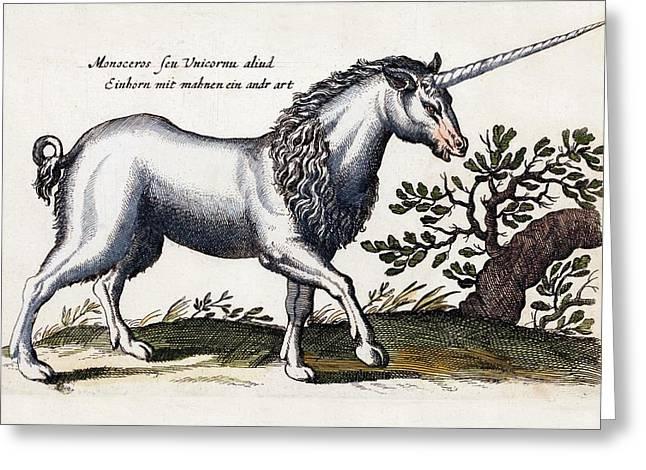 Unicorn Greeting Card by Paul D Stewart