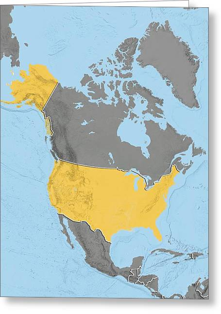 United States, Relief Map Greeting Card by Science Photo Library