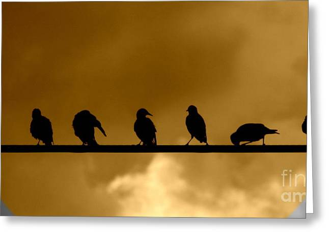 Greeting Card featuring the photograph Unity Is Strength by France Laliberte