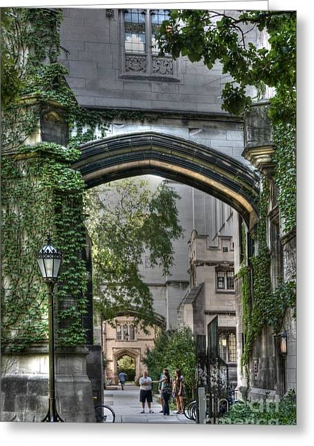 University Of Chicago Quad Greeting Card by David Bearden