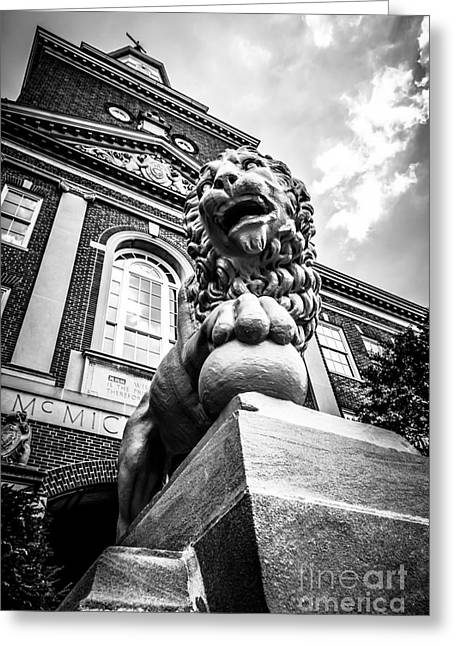 University Of Cincinnati Lion Black And White Picture Greeting Card by Paul Velgos