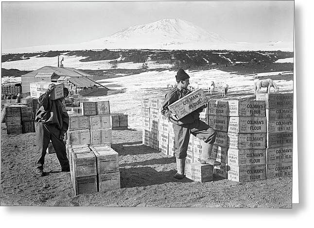 Unloading Antarctic Supplies Greeting Card by Scott Polar Research Institute