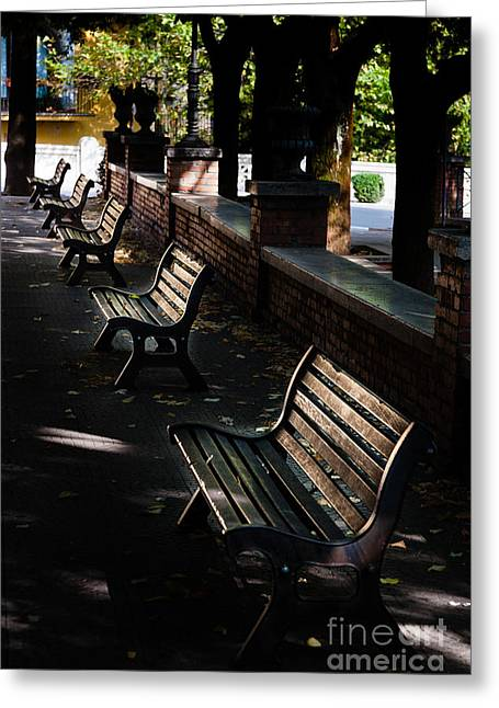 unoccupied park benches in the shade of trees in Palestrina Greeting Card