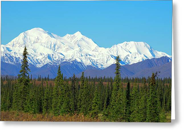 Unofficially Called Denali, Mt Greeting Card