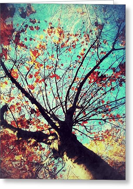 Untitled Tree Web Greeting Card