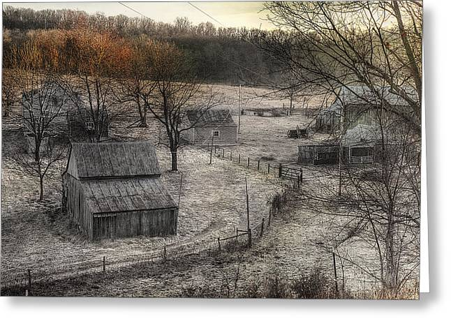 Up A Holler Greeting Card by William Fields