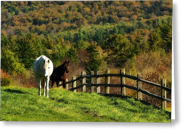 Greeting Card featuring the photograph Up The Hill by Joan Davis